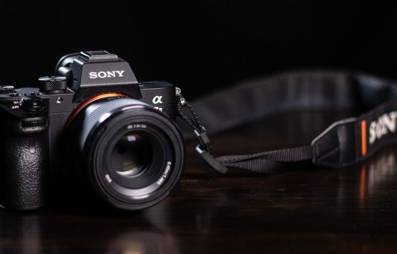 Mirrorless Cameras   7 Best Mirrorless Cameras To Pick Now
