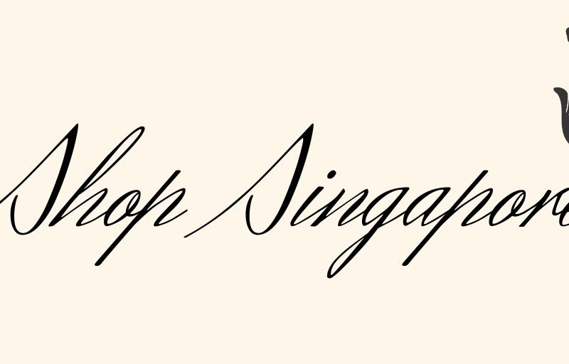 8 Best & Most Popular Online Shopping Sites In Singapore To Shop From